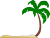 Beach Palm Tree Clip Art