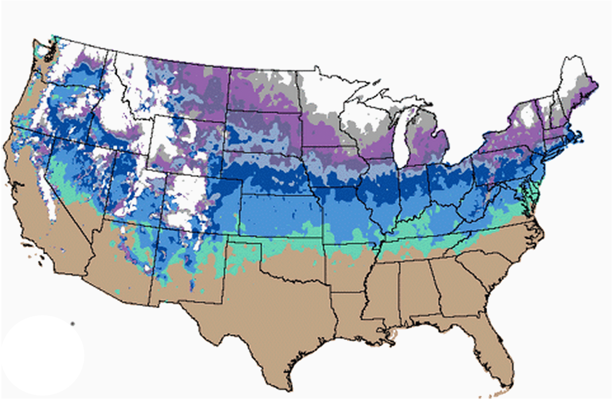 NASA End Of Winter How Snow Stacks Up Current US Snow Cover - Average snowfall map us