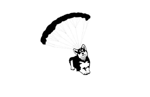 Parachuting Dog Image