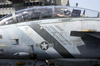 An F-14 Tomcat Assigned To The Bounty Hunters Of Fighter Squadron Two (vf-2) Displays The Bombs And Missiles, Below The Canopy, That This Tomcat Has Dropped In Support Of Operation Iraqi Freedom Image