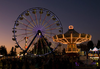 Sonoma County Fair Image