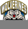 Wolverine Mascot Cliparts Image