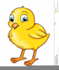 Cartoon Chick Clipart Image