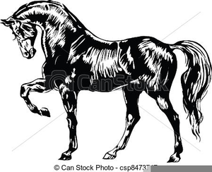 Free Black And White Horse Clipart Image