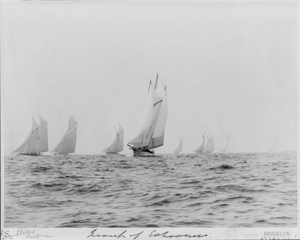 [sailboats Sailing]: Group Of Schooners Image