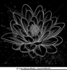 Lotus Flower Black And White Clipart Image