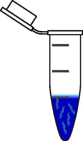 centrifuge tube dna blue clip art at clkercom vector