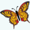 Butterfly Icon Image