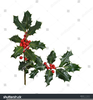 Christmas Holly Clipart Free Borders Image