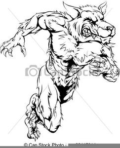 Loup.Renard.Wolf.Fox | Photos animaux sauvages, Animaux rares, Animaux