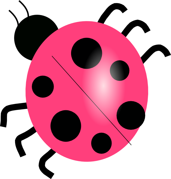 pink ladybug wwwimgkidcom the image kid has it