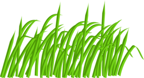green grass blade clip art at clker com vector clip art online rh clker com grass clipart png grass clipart images