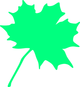 Maple Tree Bit Clip Art