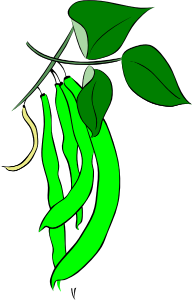 Green French Bean Clip Art at Clker.com - vector clip art online ...