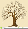 Oak Tree Clipart Royalty Free Image