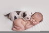 Newborn Baby Puppies Image