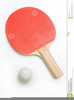 D Ping Pong Clipart Image