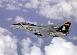F-14 Tomcat Assigned To Vf-103 Conducts Mission Over The Mediterranean Sea. Image