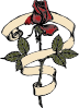 Rose Scroll Clip Art