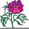 Floer Tree Clipart Image
