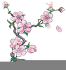 Chinese New Year Cherry Blossom Clipart Image