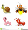 Clipart Firefly Image