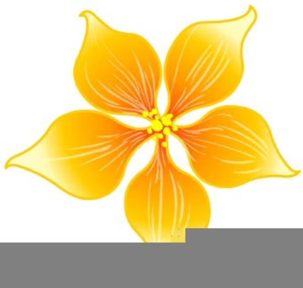 Hoa Mai Clipart   Free Images at Clker.com - vector clip ...
