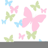 Pink Green Butterfly Clipart Image