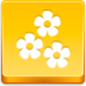 Free Yellow Button Flowers Image