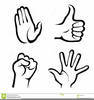 Body Parts Hands Clipart Image