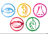 Clipart Of Five Senses Image