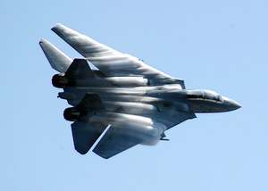 F-14 Low Level Fly-by Image