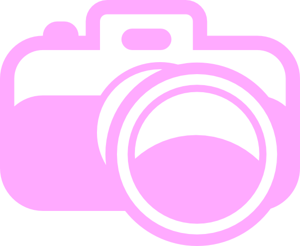 Pink Camera For Photography Logo Clip Art at Clker.com ...