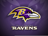 Baltimore Raven Clipart Image