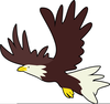 Cartoon Eagle Clipart Free Image