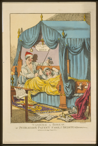 Tameing [i.e. Taming] A Shrew. Or Petruchio S Patent Family Bedstead, Gags & Thumscrews  / Williams Fecit. Image