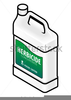 Wheat Spray Clipart Image