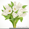 Beautiful Flower Bouquet Clipart Image
