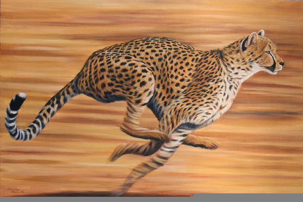 African Cheetah Running | Free Images at Clker.com ...