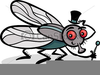 Cartoon Insect Clipart Image