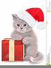 Christmas Cat Clipart Image