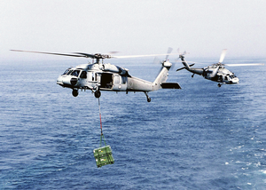 Two Mh-60s Knight Hawks Assigned To The Providers Of Helicopter Combat Support Squadron Five (hc-5) Image