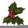 Christmas Clipart Holly Leaf Image
