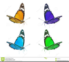 Butterfly Clipart Images Free Image