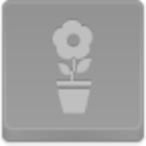 Free Disabled Button Pot Flower Image