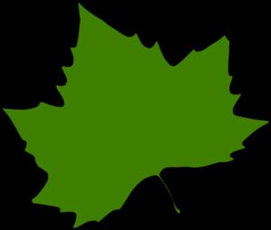 maple leaf clip art at clker com vector clip art online royalty