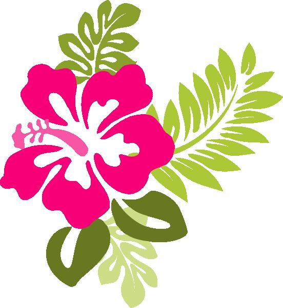 free vector graphic hibiscus - photo #27