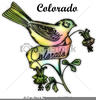 Bird Drawing Clipart Image