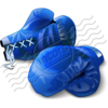 Boxing Gloves Blue 7 Image