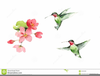 Clipart Of Hummingbirds And Flowers Image